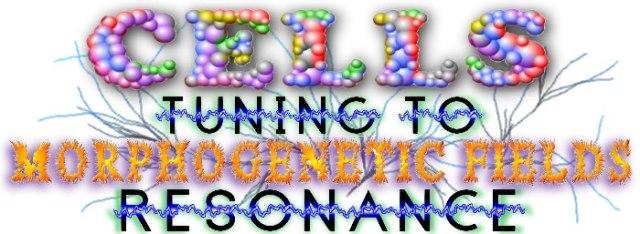 gene4